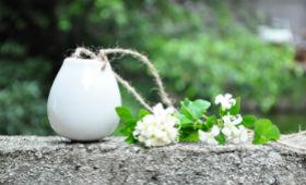 Де краще купувати кераміку для квітів?